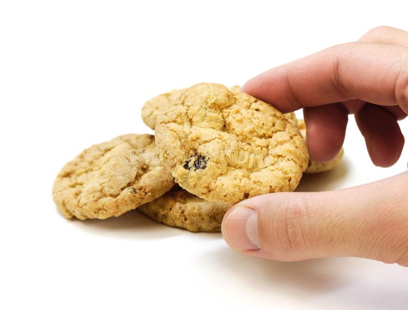 Hand holding oatmeal cookies with chocolate chips. Close up. Isolated on white background stock photography