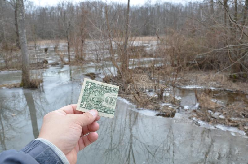 Hand holding one dollar bill in wetland area with frozen water. Hand holding one dollar bill or money in wetland area with frozen water and trees royalty free stock photos