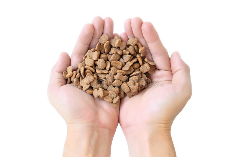 Hand holding pet food isolated on white background, stock images