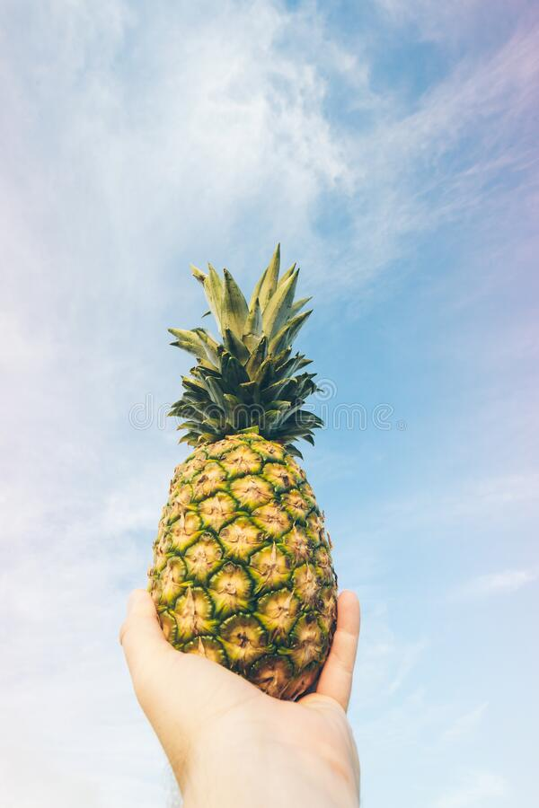 Hand holding pineapple against blue skies stock photo
