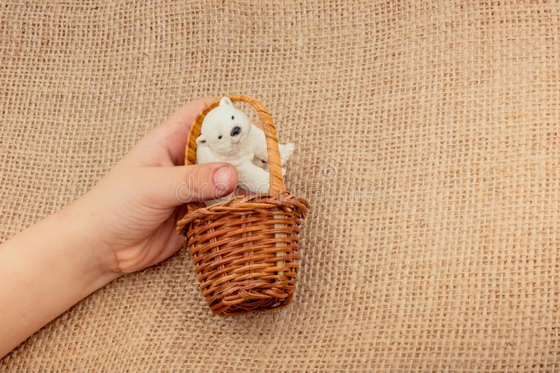 Hand holding a Polar bear model in basket royalty free stock photo
