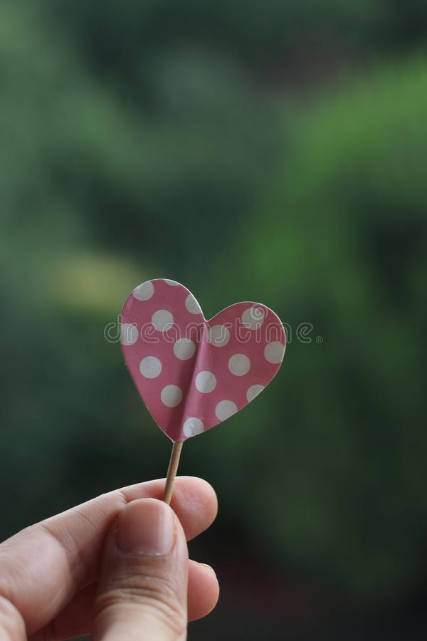 Hand holding pink polka dot paper heart stock images