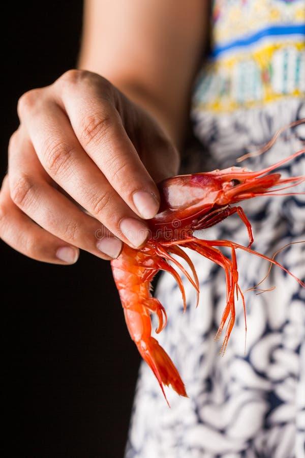 Hand holding prawn stock image