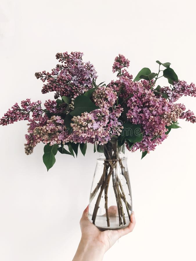 Hand holding purple lilac flowers on white background. Hello spring. Happy Mothers day. Lilac bouquet in glass vase stock photography
