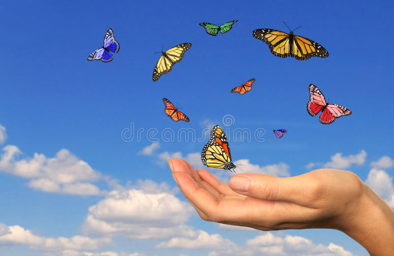 Hand Holding Released Buttterflies stock photography
