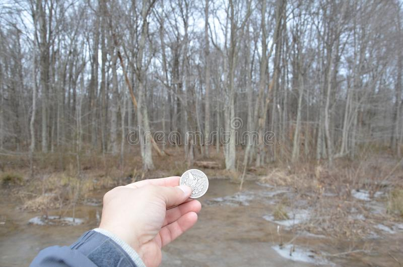 Hand holding silver coin in wetland area with frozen water. Hand holding silver coin or money in wetland area with frozen water and trees stock image