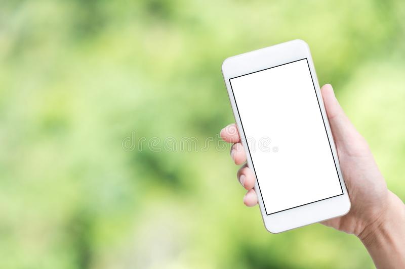 Hand holding smartphone with white mock-up screen over green abstract bokeh background royalty free stock photos