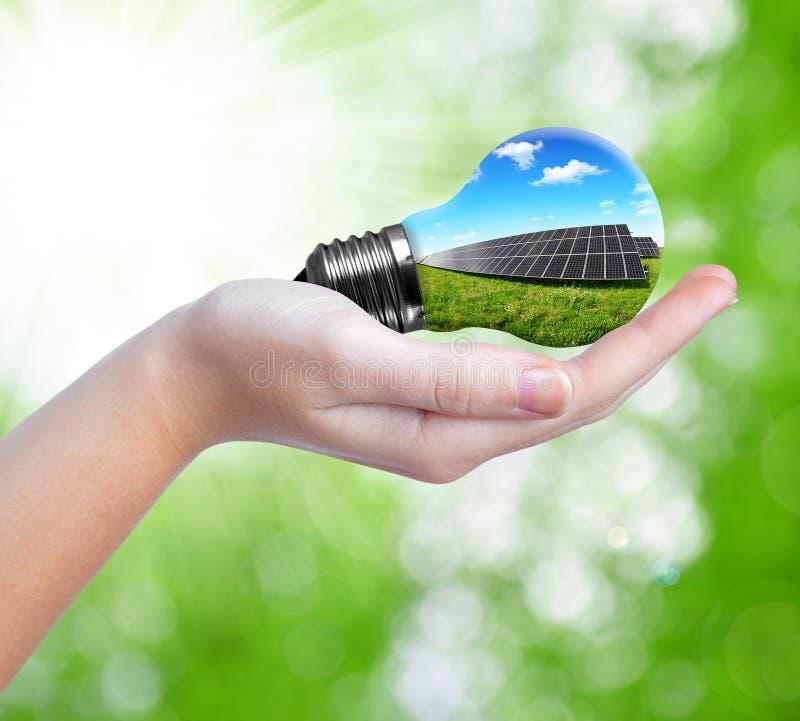 Hand holding solar panels in light bulb stock photography