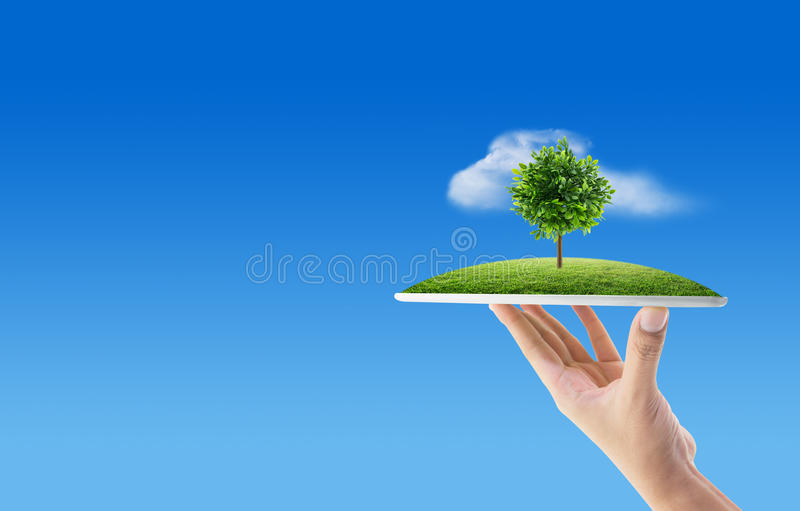 Hand holding tablet computer with grass and tree of nature background with environment concept. royalty free stock photos