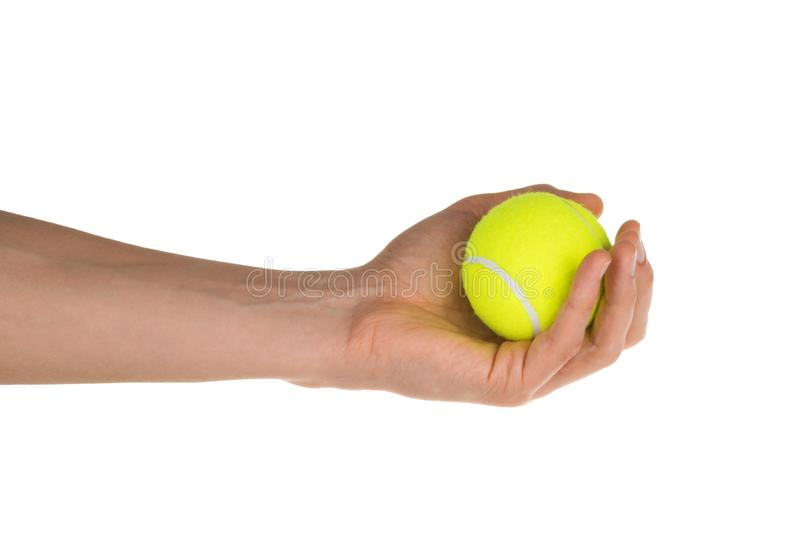 Hand holding tennis ball isolated on white clipping path royalty free stock photo