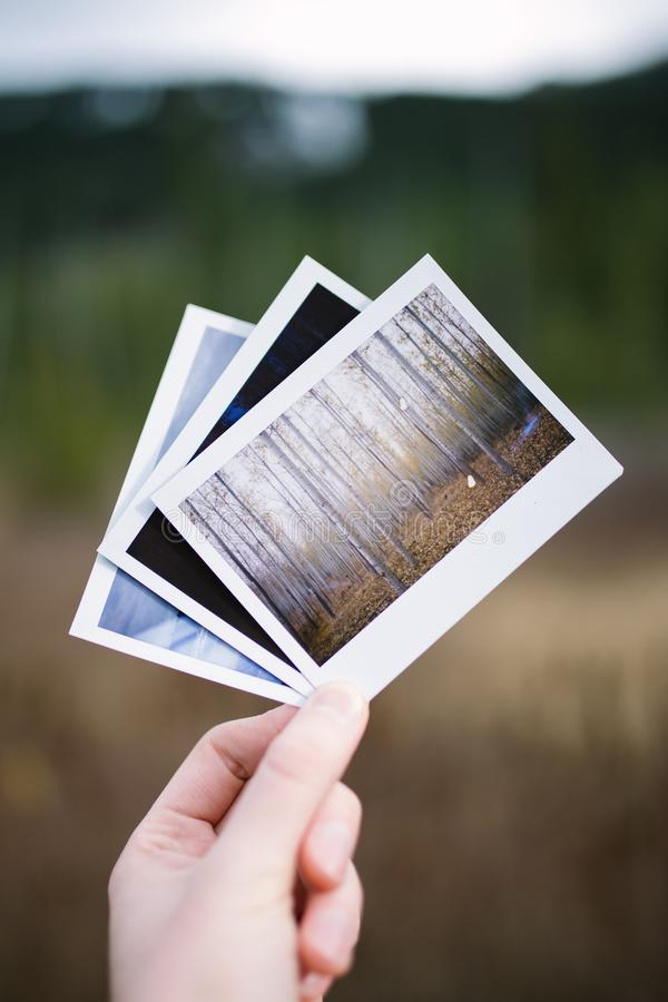 Hand holding three vintage instant film photos of nature stock photos