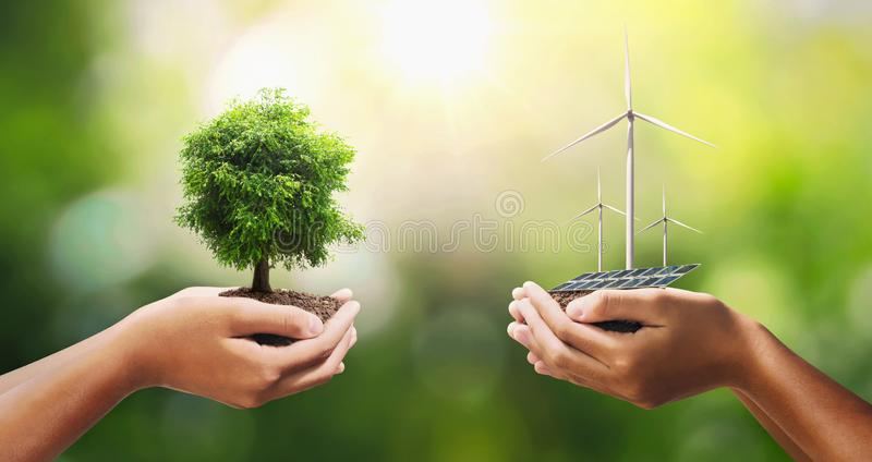 Hand holding tree with turbine and solar panel. concept eco energy and clean power. Agriculture, background, bio, business, care, conservation, corporate, day royalty free stock photos
