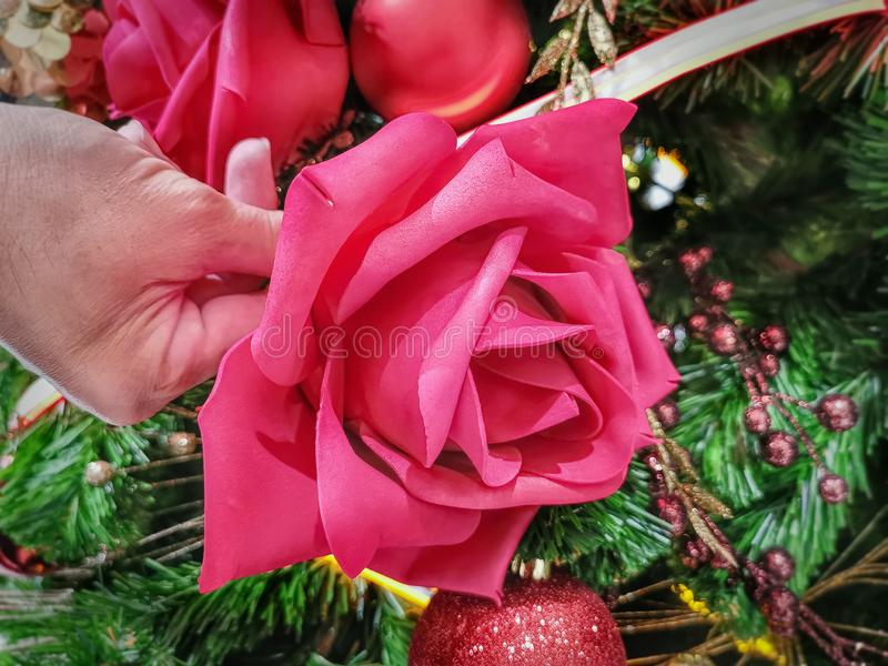 Hand Holding Vibrant Red Artificial Rose Flower royalty free stock images
