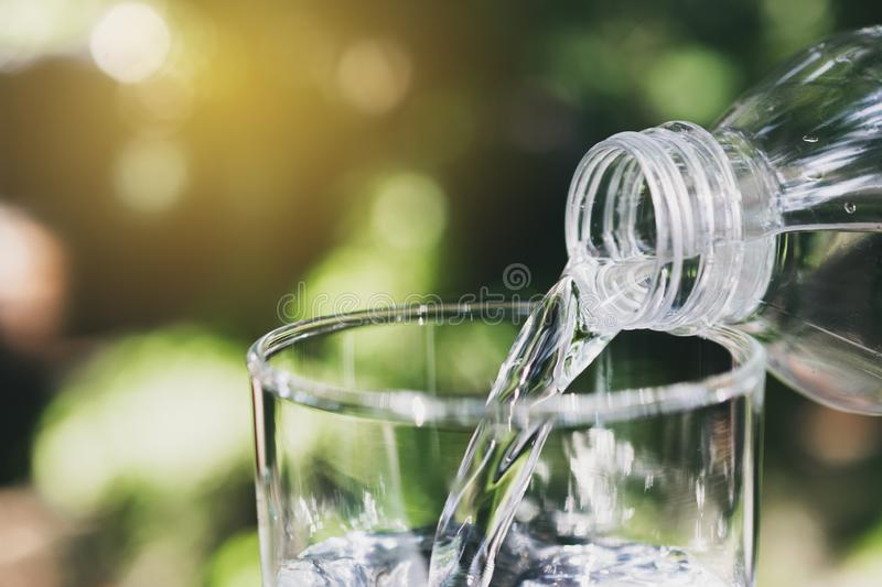 Hand holding water bottle in nature background royalty free stock images