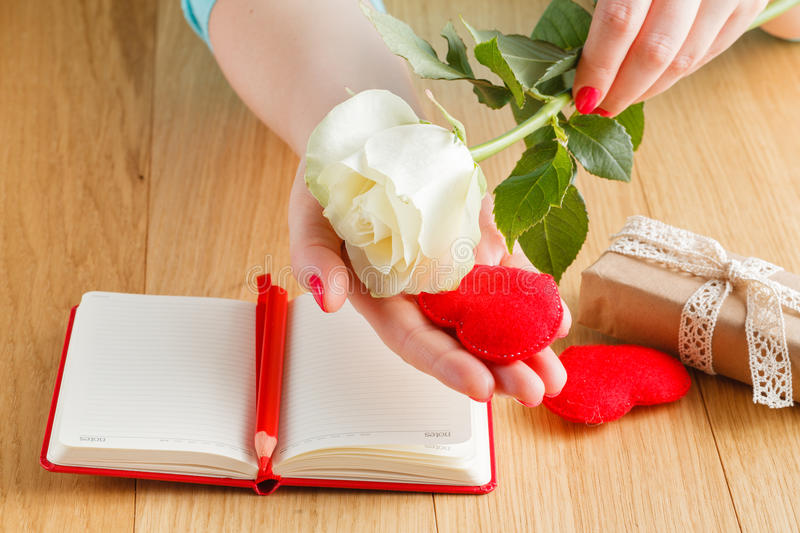 Hand holding white rose on open notebook and hearts royalty free stock image