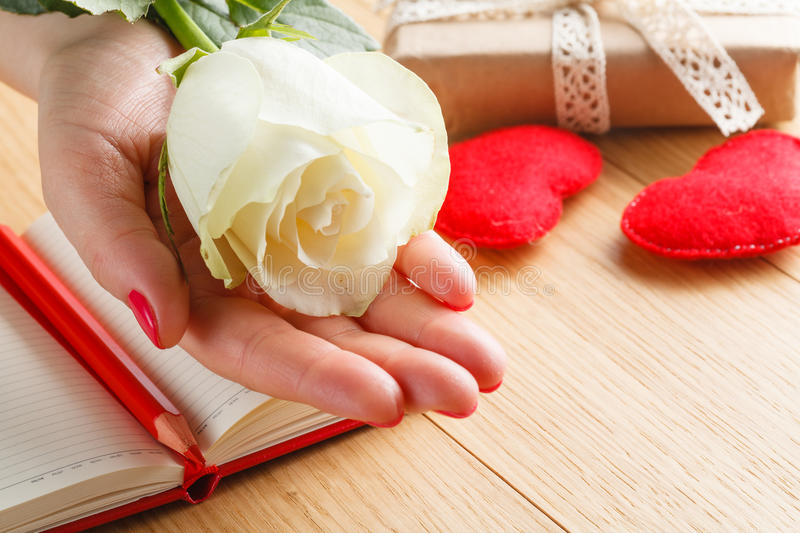Hand holding white rose on open notebook and hearts royalty free stock photography