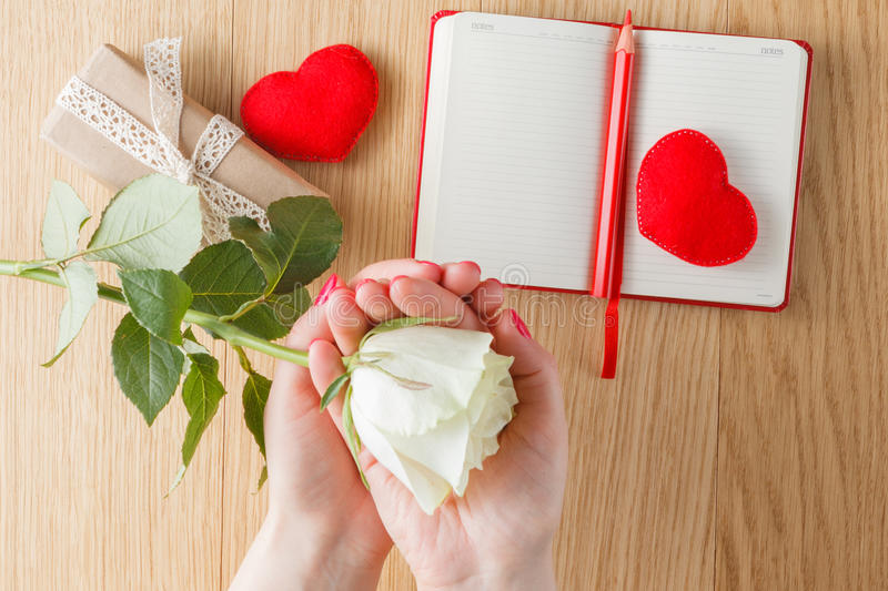 Hand holding white rose on open notebook and hearts stock image