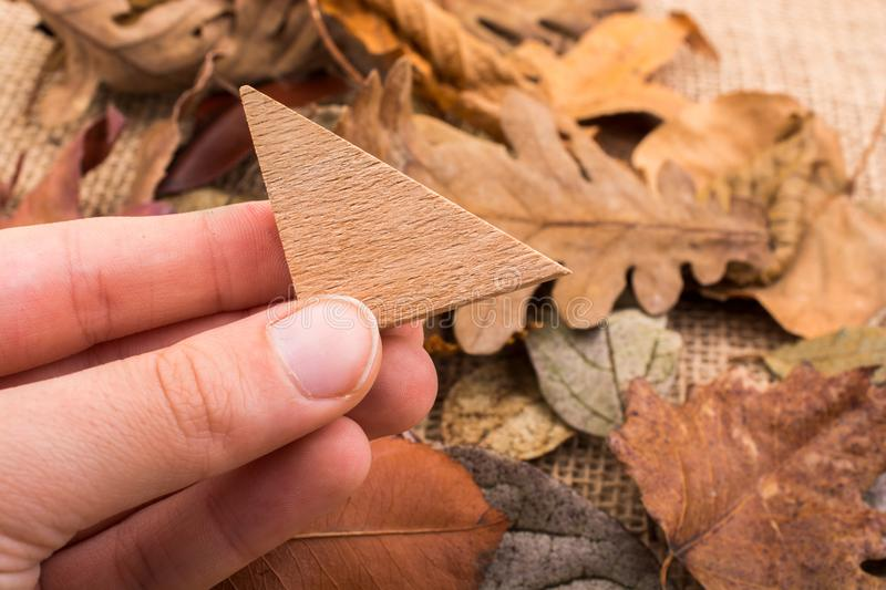 Hand holding wooden triangle over leaves vector illustration