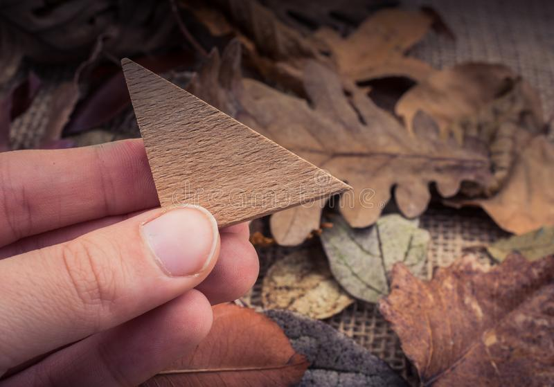 Hand holding wooden triangle over leaves stock illustration