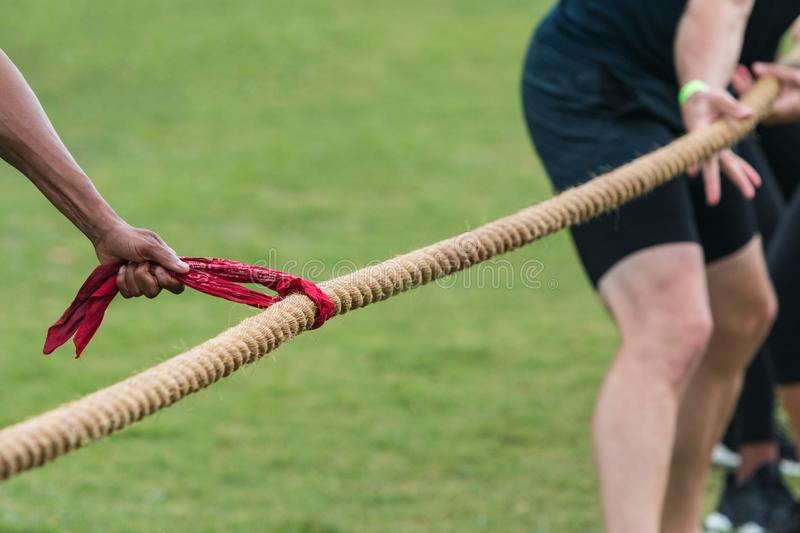 Hand Holds Bandana To Start Tug Of War Match. A man`s hand holds a red bandana attached to a thick rope, as a team grips the rope in anticipation of their tug of stock image