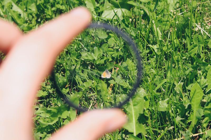 Hand holds circular polarizer filter on summer landscape background. Hand holds a circular polarizer filter on summer landscape background royalty free stock photo