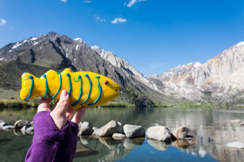 Hand holds a fish shaped decorated sugar cookie in front of Convict Lake, a popular fishing destination in California.  stock images