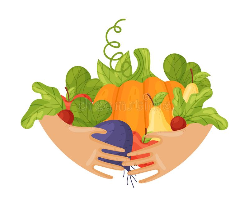 A lot of different vegetables and fruits in the hands. Vector illustration on a white background. royalty free illustration