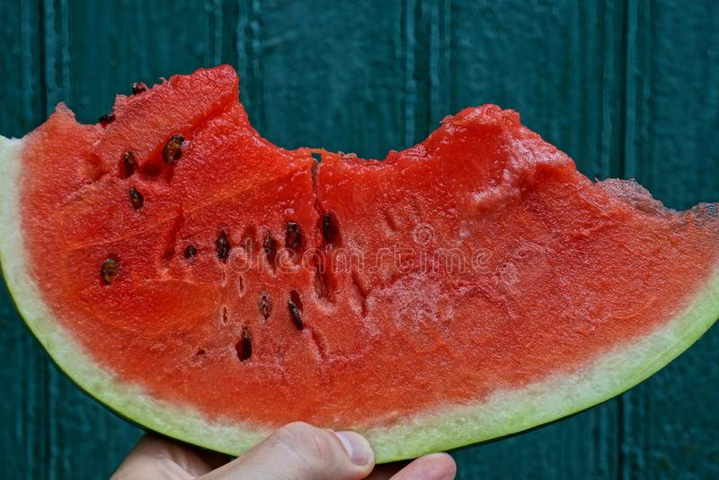 Hand holds a piece of red ripe watermelon royalty free stock photo