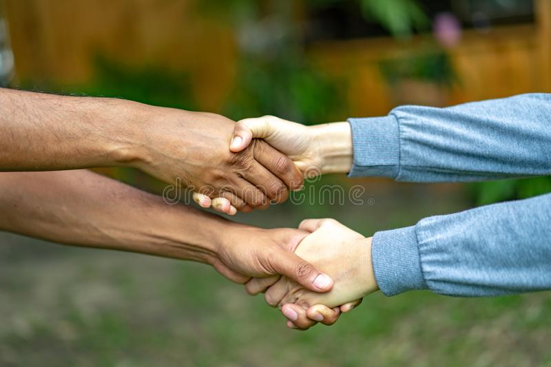 Hand holds together in the community in the garden / park stock photo