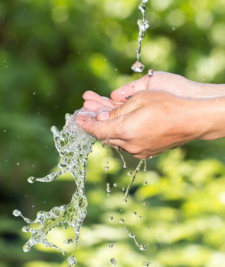 Hand i vattnet i natur royaltyfri foto