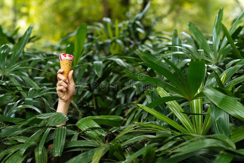 Hand with ice-cream cone royalty free stock photos