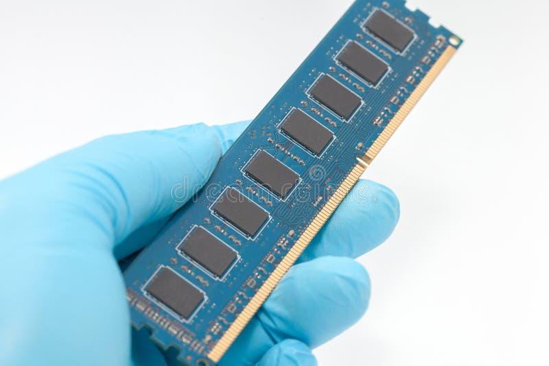 Hand im blauen Handschuh, der RAM-Gedächtnis hält stockfoto