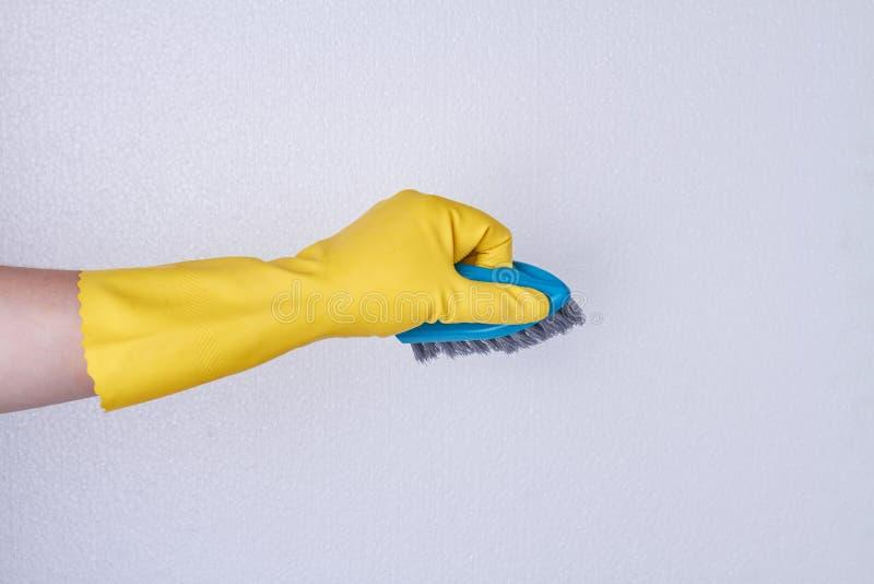 Hand im Gummihandschuh unter Verwendung der Reinigungsb?rste stockfoto