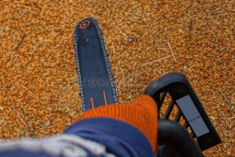 Hand im roten Arbeitshandschuh, der eine lange schwarze Kettensäge hält lizenzfreies stockbild