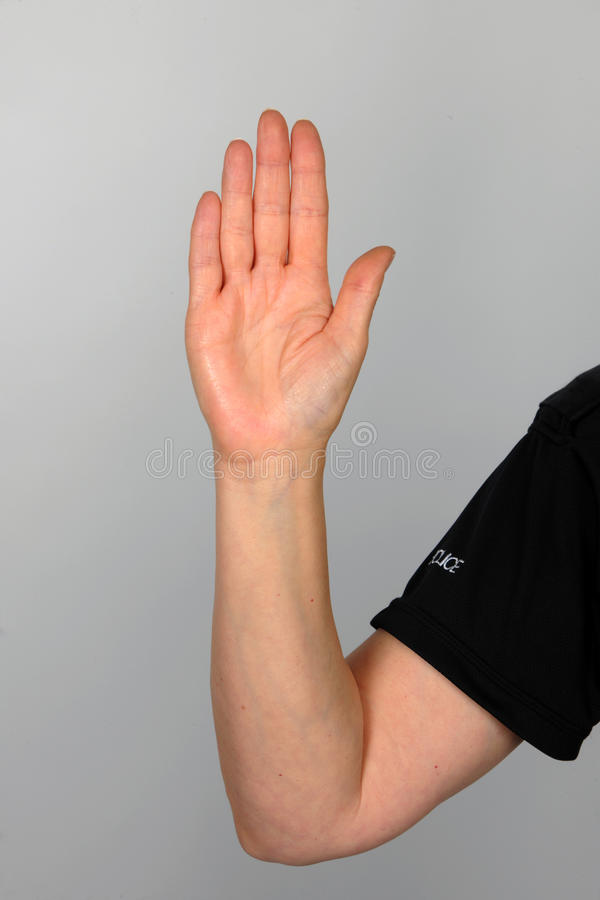 Hand of the law. A police officer's hand. Upheld hand against grey. Suitable for use as a stop gesture or an oath of honor royalty free stock photos