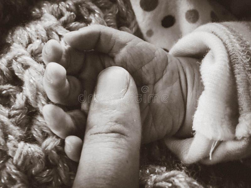 hand little arkivfoton