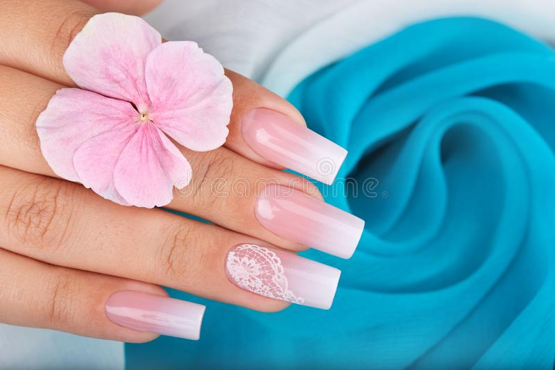 Hand with long artificial manicured nails with ombre gradient design. In pink and white colors stock photography