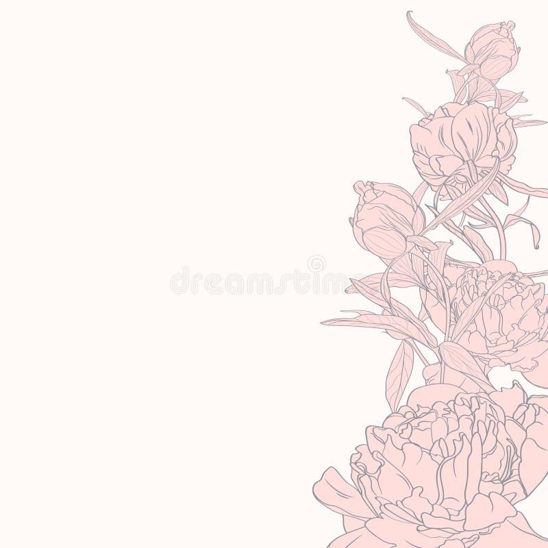 Hand målad linje rosa färgpioner Våren eller sommar blommar med utrymme för din text royaltyfri illustrationer
