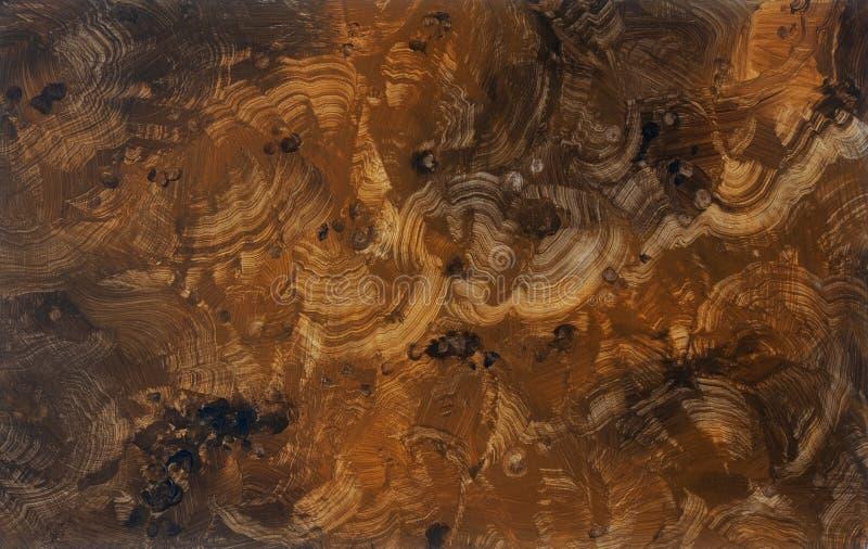Hand målad plattaillusionmålning, trompe - l ' oeil, med efterföljd av elegant dyrbart burlträ knöt träkornmodellen royaltyfri illustrationer