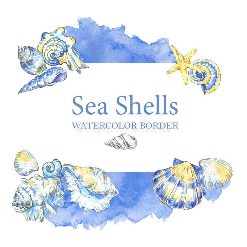 Hand målad snäckskalgräns Dekorativ sommarbakgrund för vattenfärg royaltyfri illustrationer