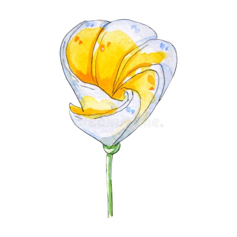 Hand m?lade tropiska blommor f?r vattenf?rg vektor illustrationer