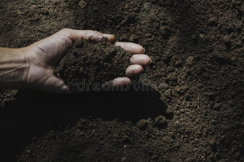 Hand of male holding soil in the hands for planting with copy space for insert text royalty free stock photos