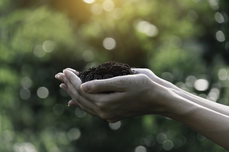 Hand of male holding soil in the hands for planting with copy space for insert text stock photo