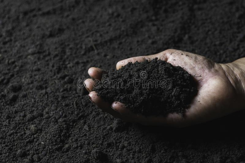 Hand of male holding soil in the hands for planting with copy space for insert text stock image