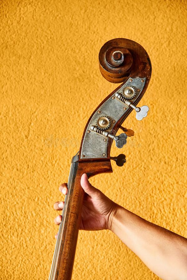 Hand of a male jazz musician holding a double bass stock images
