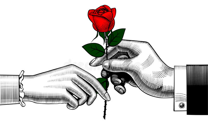 Hand of man give a red rose to woman royalty free illustration