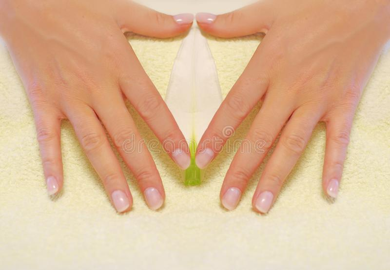 Hand manicure royalty free stock photos
