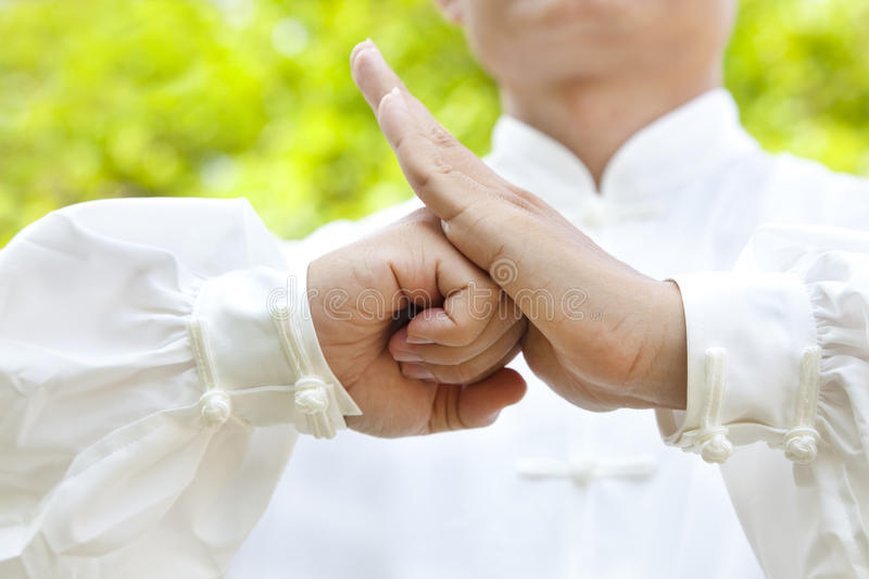 Hand of master making gestures royalty free stock image