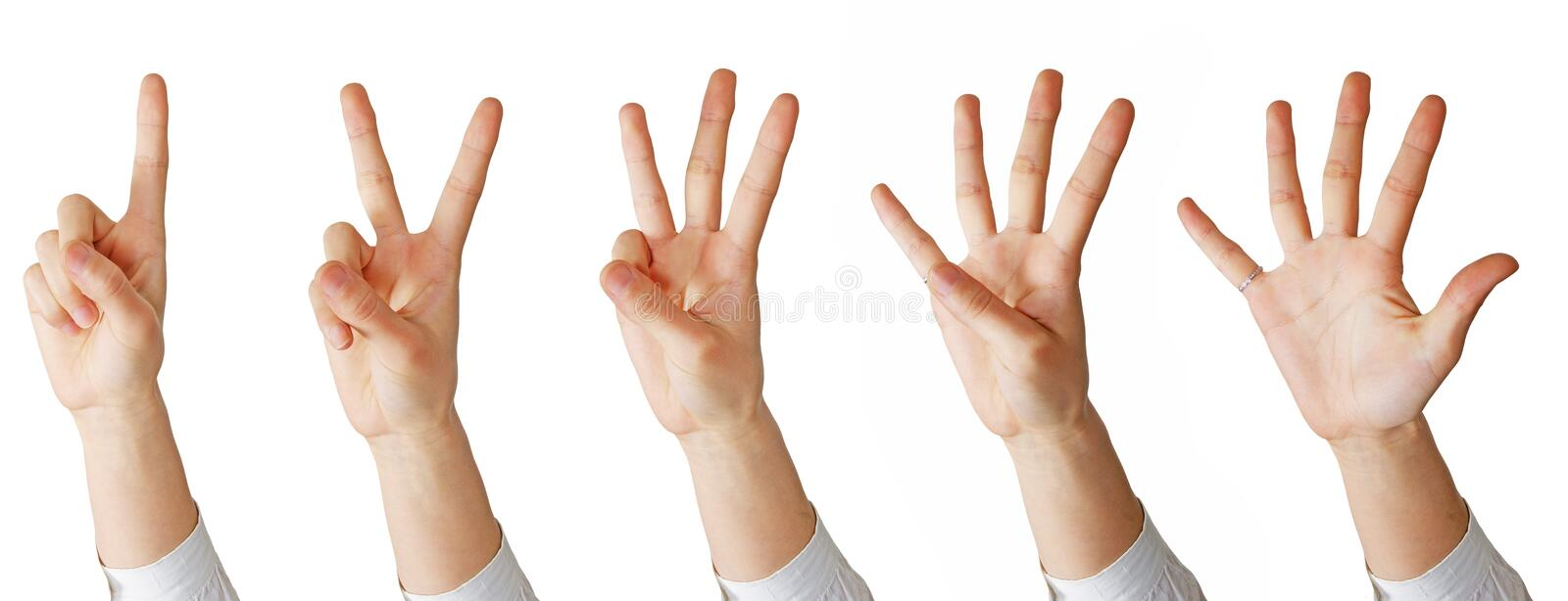 Download Hand math stock image. Image of number, learn, four, counting - 18419005
