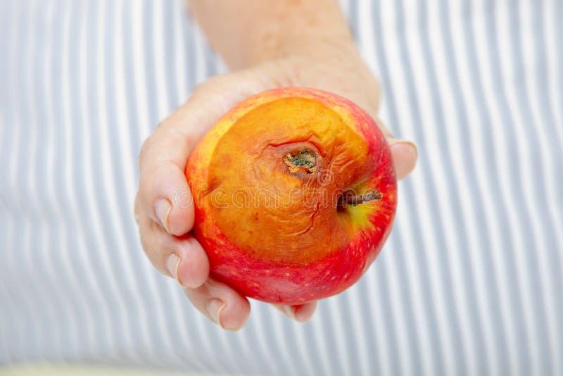 Hand med det ruttna äpplet fotografering för bildbyråer